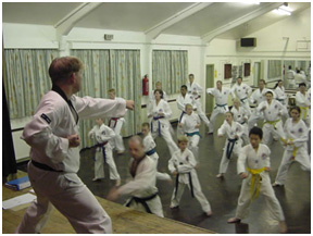 The Way Of The Hand, Foot And Walking Stick: Taekwondo And Parkinson's Disease (3/6)